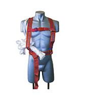 Belt safety PP2D. The belt is saving.