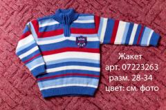 Jacket, article 07223263