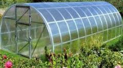 The greenhouse from a profile pipe under the EKO
