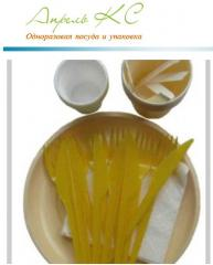 Sets of disposable tableware Picnic
