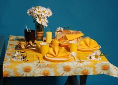 Plastic ware for catering