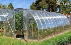 The greenhouse from a profile pipe under cellular