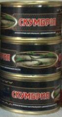 "Canned food fish natural ""A mackerel"
