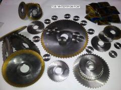 Shevera disk