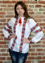 Blouses with an embroidery