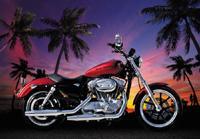 Photowall-paper Harley
