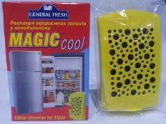 Поглотитель неприятных запахов в холодильнике,1шт.