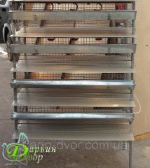 Cage quail for egg incubatory four-level at retail