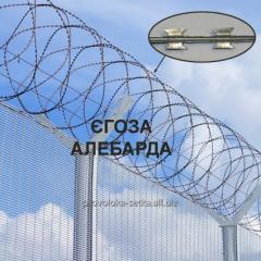 Concertina NATO Alebarda 450/5