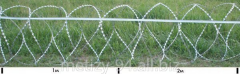 Колючая спираль (Егоза) Алебарда 600/5