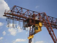 The crane goat electric general purpose of / p to