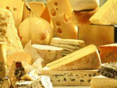 Sale of cheeses, oils, spread wholesale and retail