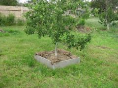Borders for a garden concrete an agroboard (M
