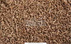 Feed additives for pigs. Fish meal to wholesale in