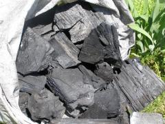Coal pyrolysis of strong breeds of wood