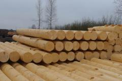The timber calibrated from a fir-tree: The