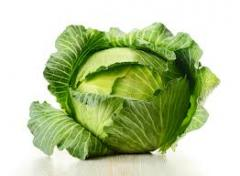 I will buy cabbage, I Will sell cabbage in Ukraine
