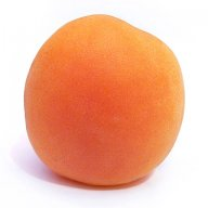 The apricot frozen