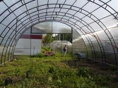 Farmer (industrial) greenhouse