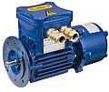 Explosion-proof motors with electromagnetic brake