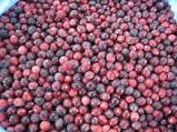 He cranberry frozen