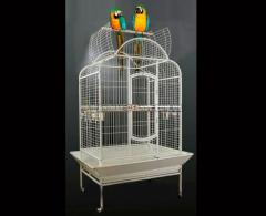 Cage cockatoo enclosure