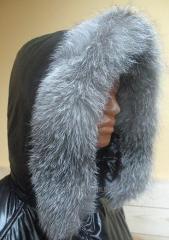 Edges fur Dnieper