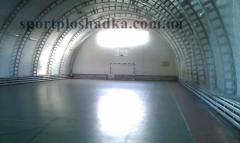 Coverings sports polyvinylchloride Kiev.