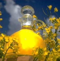 Not refined rape oil