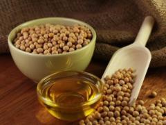 Продам соевое масло и соевый шрот от производителя