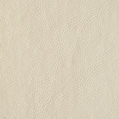 The imitation leather, suede (alcantara) also