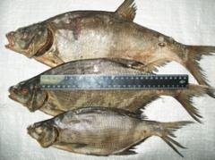 Рыба сушенная   ТМ 'Рыбный Рай', весовая а также в