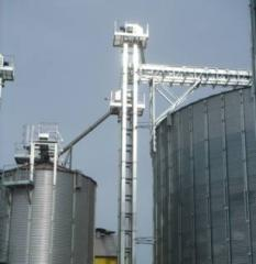 Noriya for grain and other bulk solids