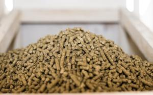 Compound feed for rabbits wholesale, compound feed