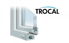 Двухкамерное окно+дверь Trocal
