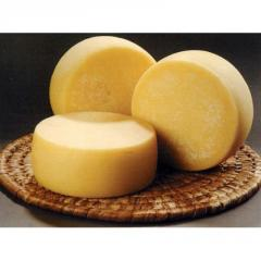 Полутвердый козий сыр