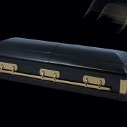 Элитный гроб «Патриот»
