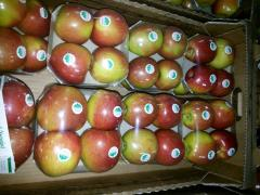 Apples from Ukraine Idared, Golden, Granny