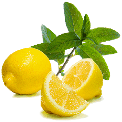 Fragrance Lemon lime