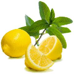 El aromatizador el Limón laym