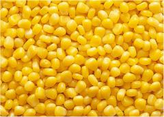 Corn of grain frozen
