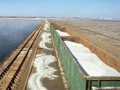 Соль техническая на экспорт, недорого, Димиор