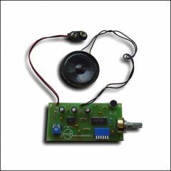 NT200 - Voice mask (Voice Changer)