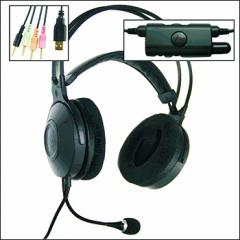 Earphones with the subwoofer which is built in by