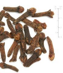 Extrato de Syzygium Cumini 95%
