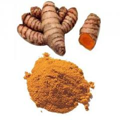 Curcuma Longa extract of 95%