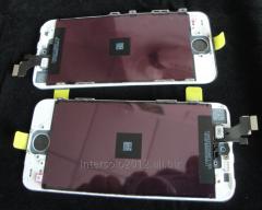 Display of Apple iPhone 5 Original (Black and