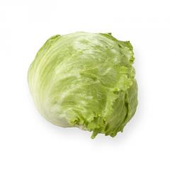 Салат головчастий Айсберг