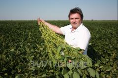 Семена  сои для всех регионов Украины