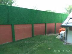 Зеленый забор ограждения декоративные
